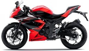 Kawasaki Ninja RR Mono