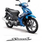 Suzuki-Smash-line